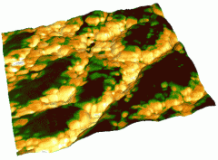 Mixed 3D image. 3D Frame: topography. Skin: phase shift. Tapping mode. Probe Mikromasch NSC11B. 1.6x1.6 um.